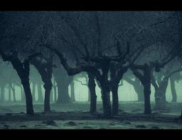 haunting landscape