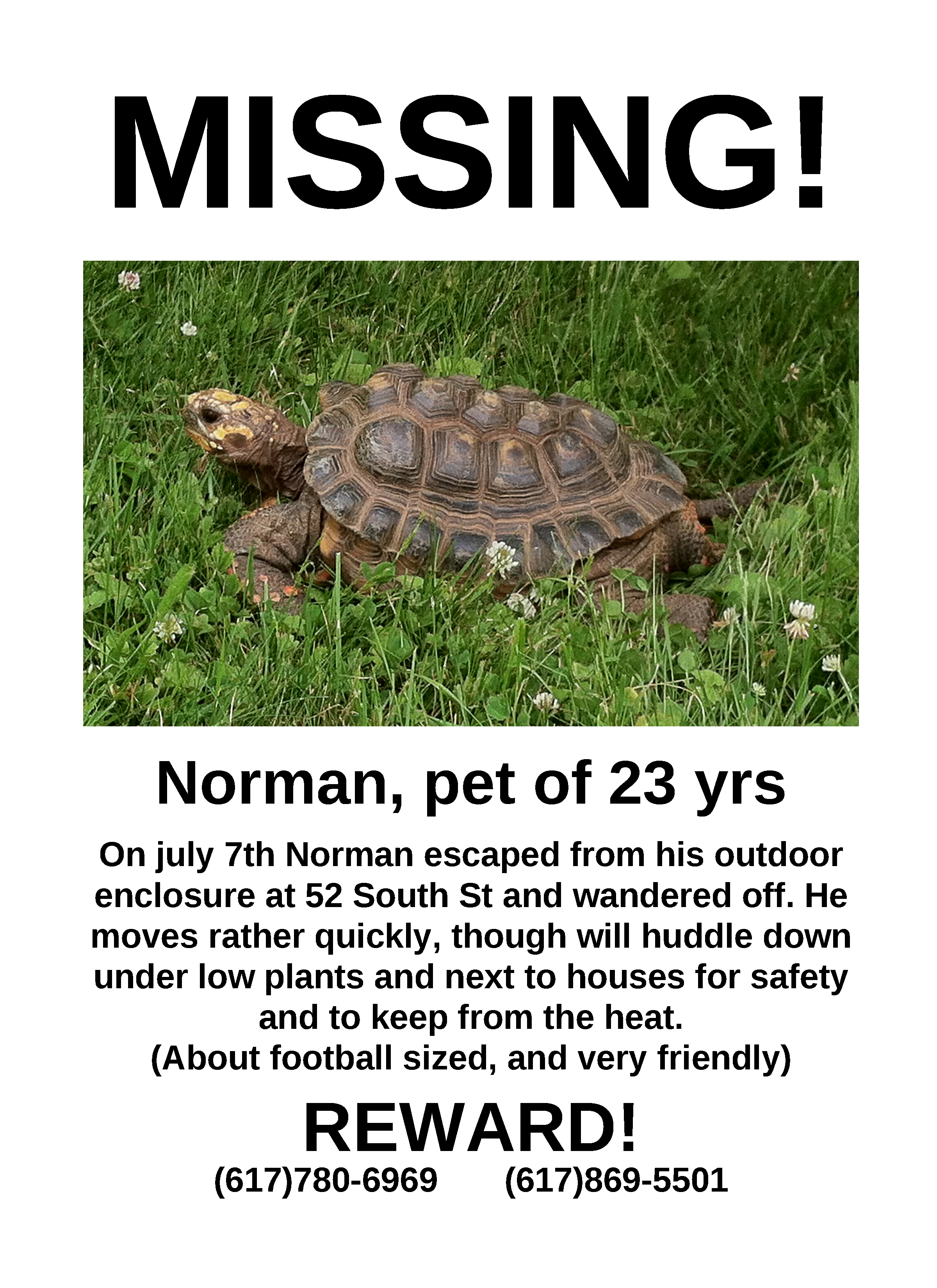 Doc14031984 Lost Poster Template Missing Dog Poster 58 More – Missing Poster Template