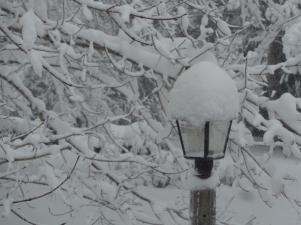 My light post wearing a hat by Ellen Arnold
