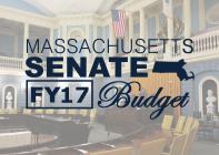 FY17 Senate Budget Final